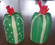 Pop Bottle Cactus