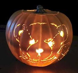 Cherish Teddies Teddy Bear Pumpkin
