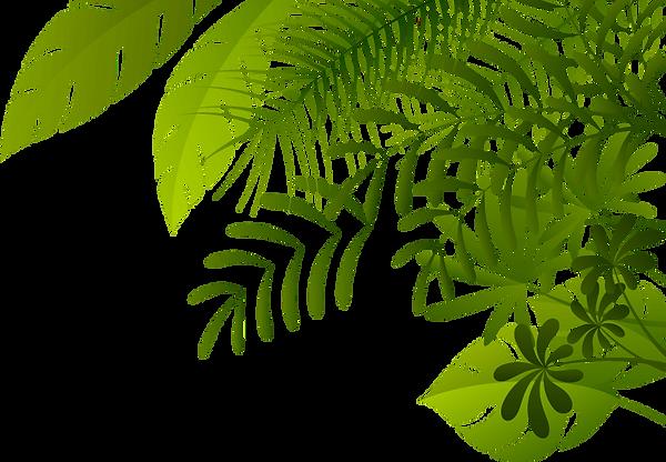 jungleplants.png
