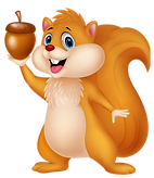 Squirrel Clipart png