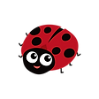 Ladybug Clipart png
