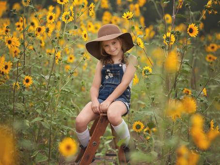 Kingman Arizona Child Photographer | Flagstaff Sunflowers