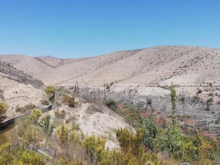 Incertidumbre hídrica en Chile ¿Un problema sin solución?