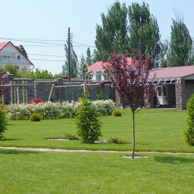 Молодой декоративный сад.JPG