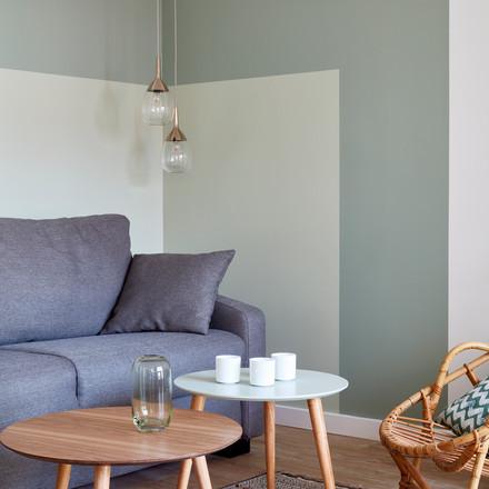 Christelle_Maldague_renovation_appartement_Paris_Salon_3.jpg