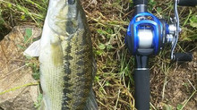 Ray Blue LIGHTNING Bass Rod & Titan-TT100 Baitcasting Reel Field Test