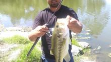 PB Bass on Ray Alpha SQUAL UL Rod