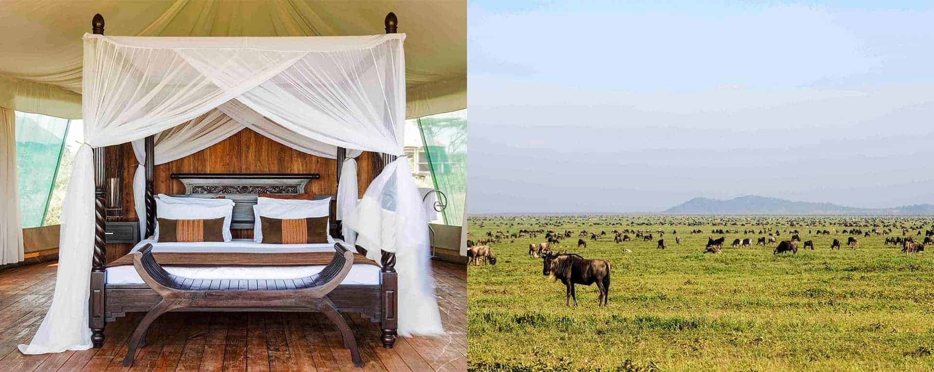Tanzania & Kilimanjaro Tours | Inspire Me World Travel | Africa Tours