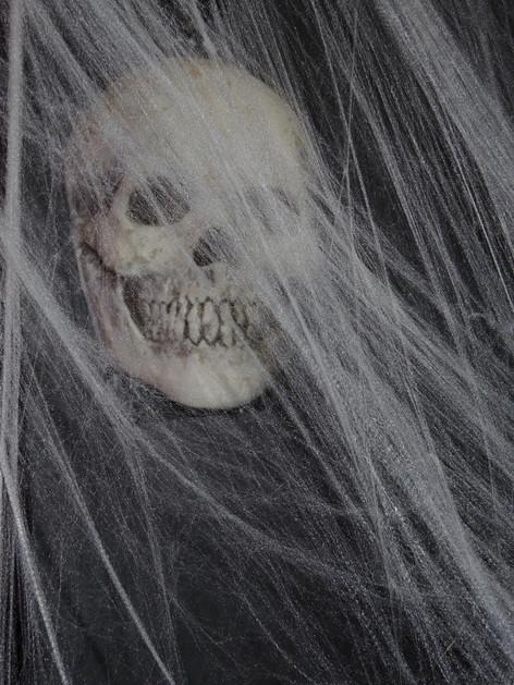 stuttgart_schwarz-our_dark_halloween-2017_10_30-aufbau-sylvette-0020