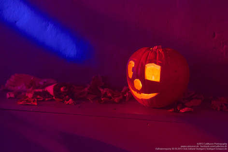 stuttgart_schwarz-our_dark_halloween-2015_10_30-cat_mason-0007