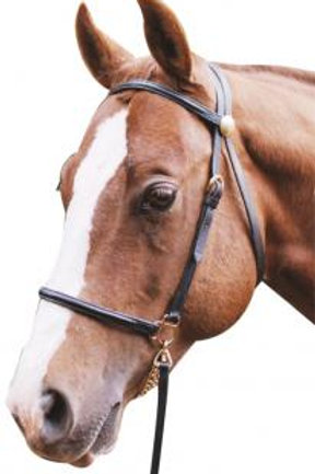 Lead in Bridle