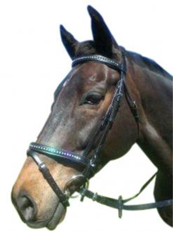 Double Jewelled Bridle