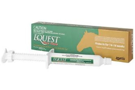 Equest Plus Tape