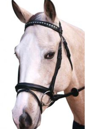 Stars and Stones Bridle