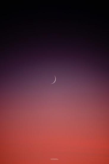 Croisant de Lune