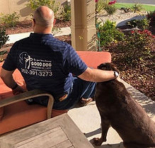 Good Dog Training in The Villages, Florida