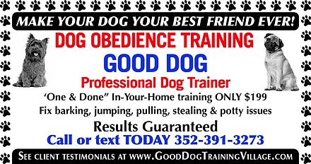 Good Dog SeptAd.png