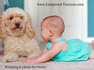 Home Carpet Cleaning Tips