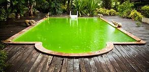 Gree pool water - Neglected swimming pool