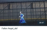Fallen-Angel_tn.jpg