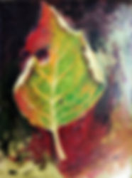 Nature_08.jpg
