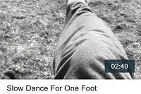 slowdanceforonefoot_tn.jpg