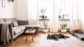 Home Comfort & Health