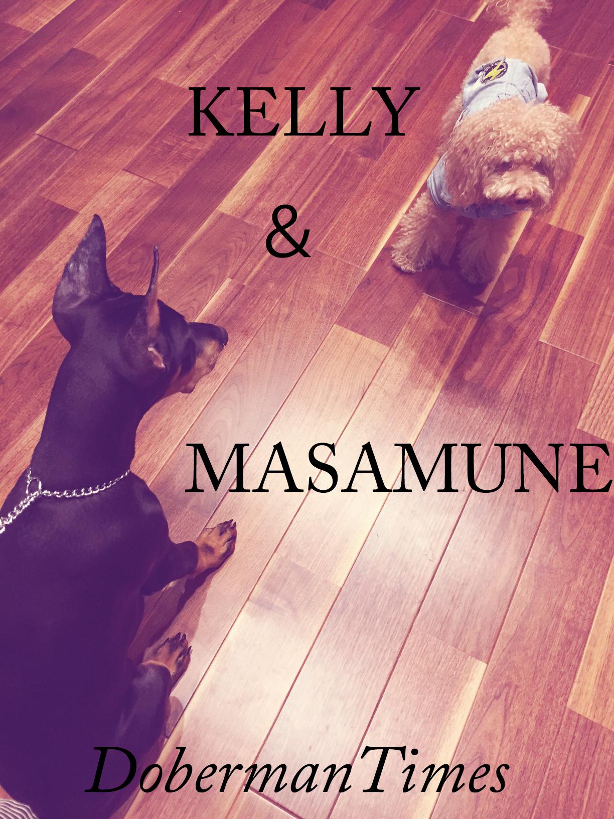KELLY(8歳・♂)&MASAMUNE(4ヶ月・♂)