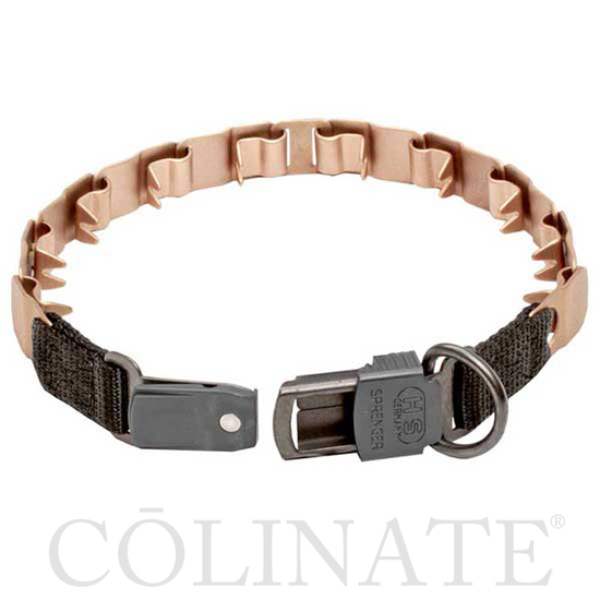 Curogan-Dog-Collar