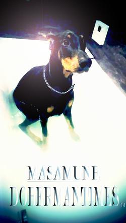 masamune11