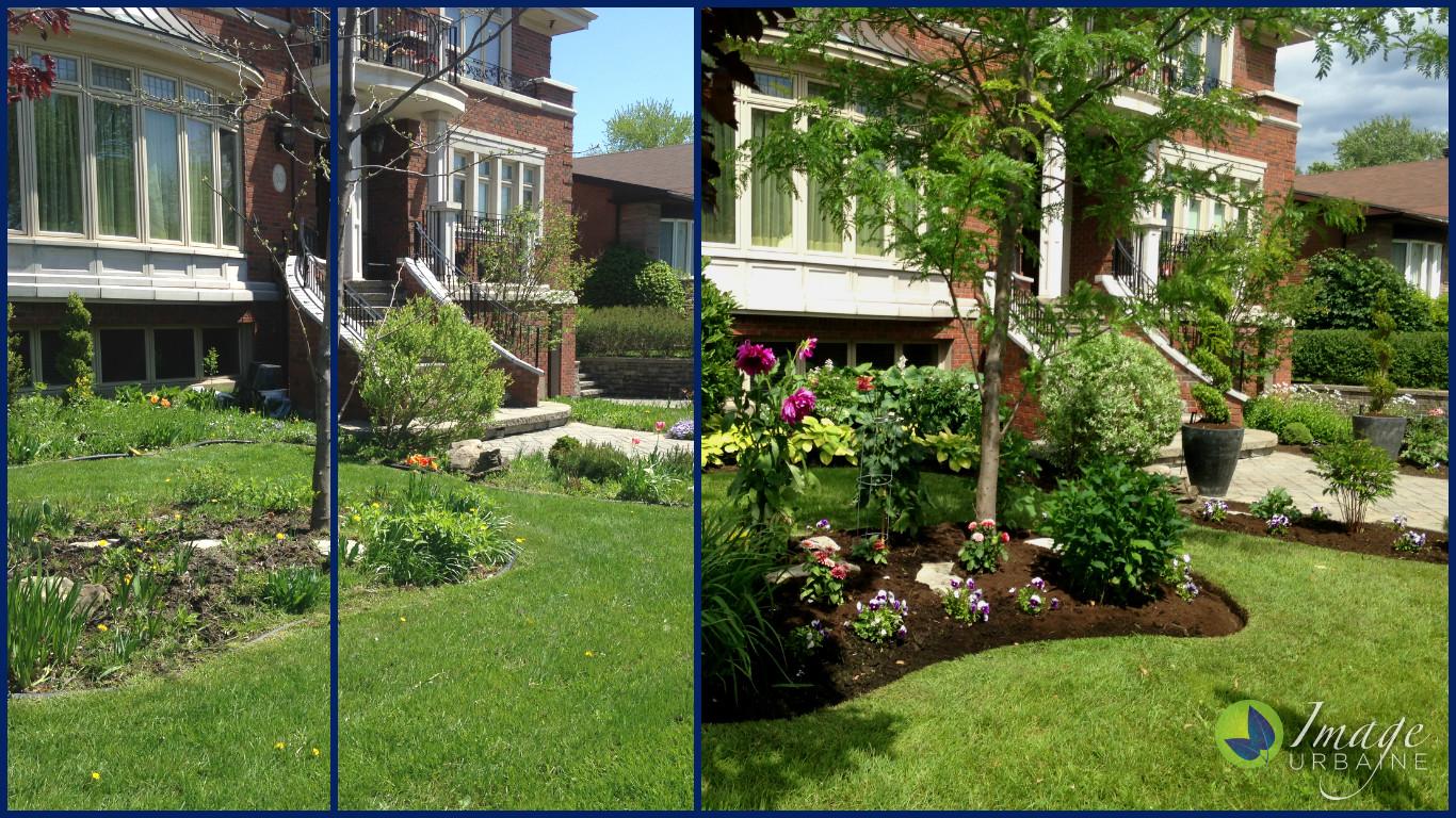 Albion Street Garden