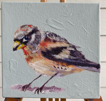 HawkFinch_Bird_6X6_Michelle_Palmer_Art_S