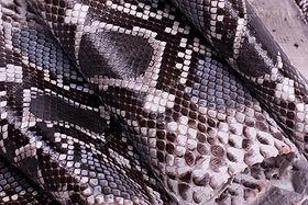 Python leather 2.jpg
