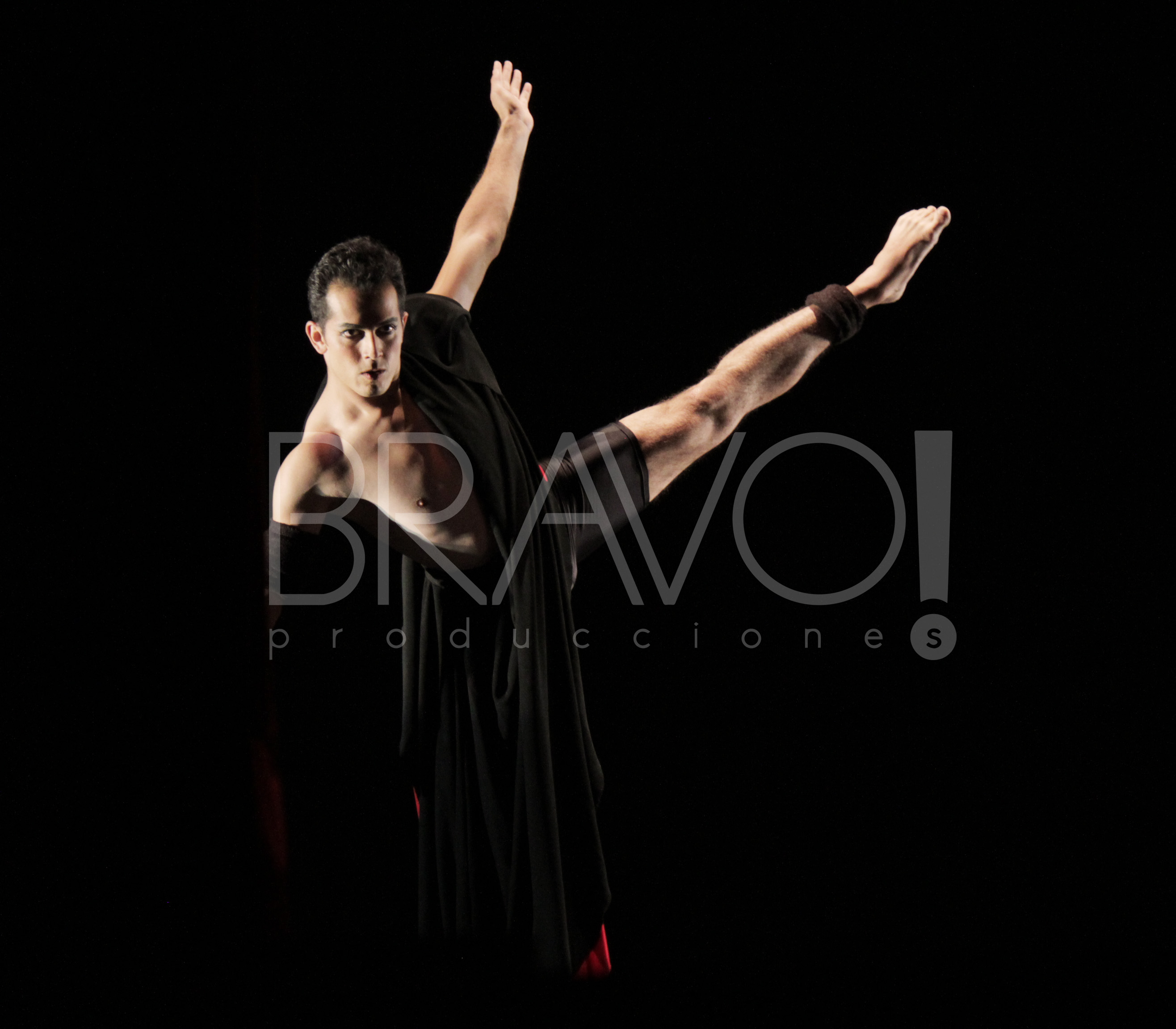 Homenaje a Guillermina Bravo
