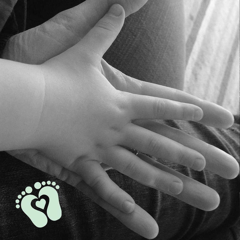 Child and adult hand