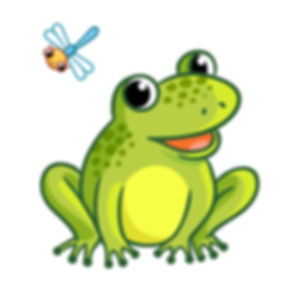 shutterstockfrogdragonfly [Converted]-1_edited_edited.jpg