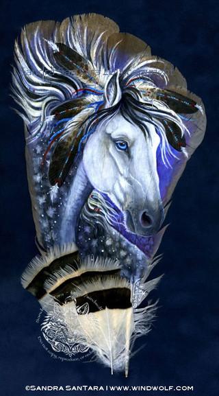 Star Pony Spirit