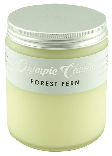 Forest Fern