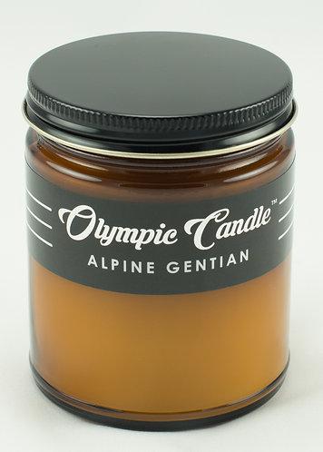 Alpine Gentian