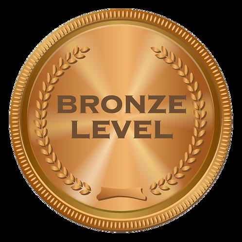 Bronze Sponsor ($500 +3% fee of $15)