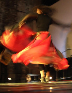 Danse roms