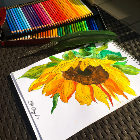 Miluju, Maluju Slunečnice