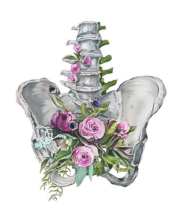 FloralPelvisWhite8x10.jpg