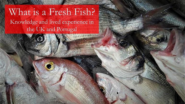 What is a fresh fish.JPG