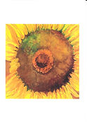Note Card sunflower.jpg