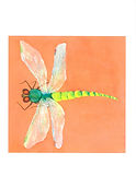 Note Card dragonfly copy.jpg
