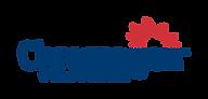 chromagen logo.png