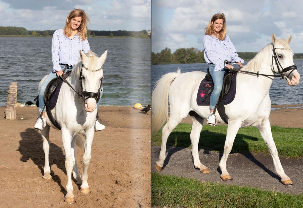 2020-joelle-paard-template8.jpg