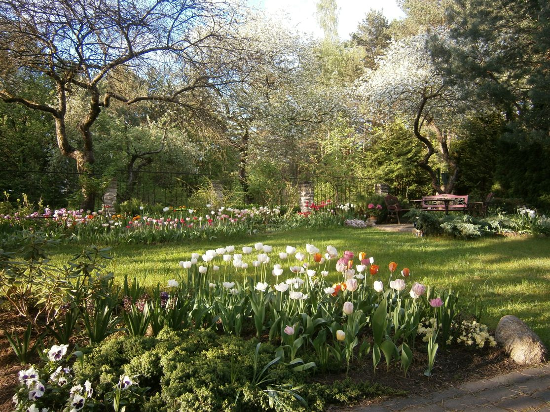 J_architects_Tulip Garden_26