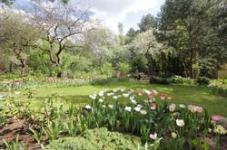 J_architects_Tulip Garden_02